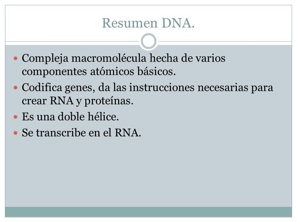 Resumen DNA. Compleja macromolécula hecha de varios componentes atómicos básicos.
