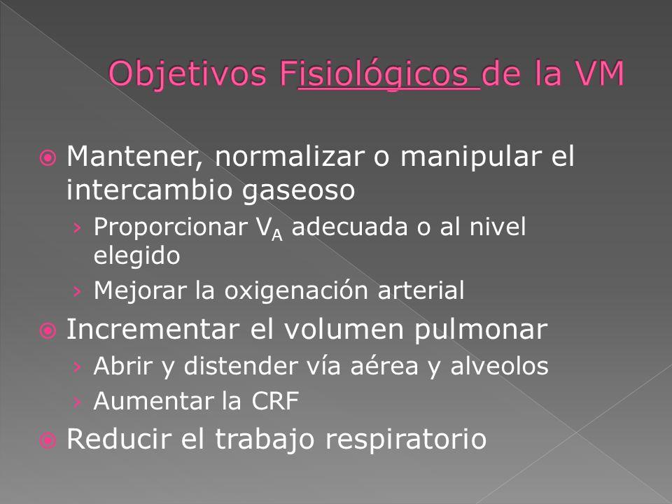 Objetivos Fisiológicos de la VM