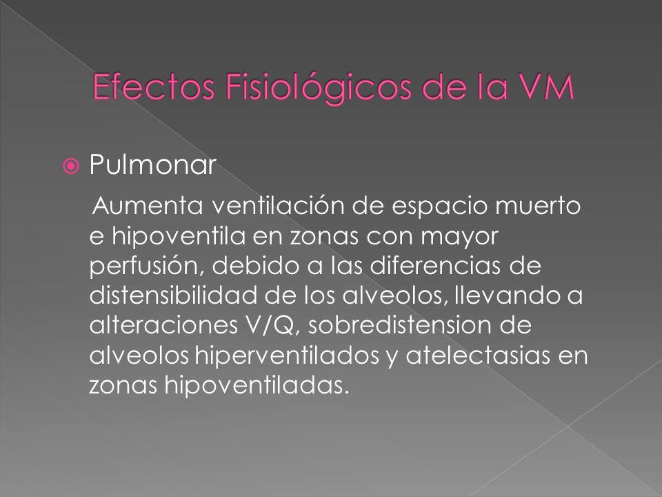 Efectos Fisiológicos de la VM