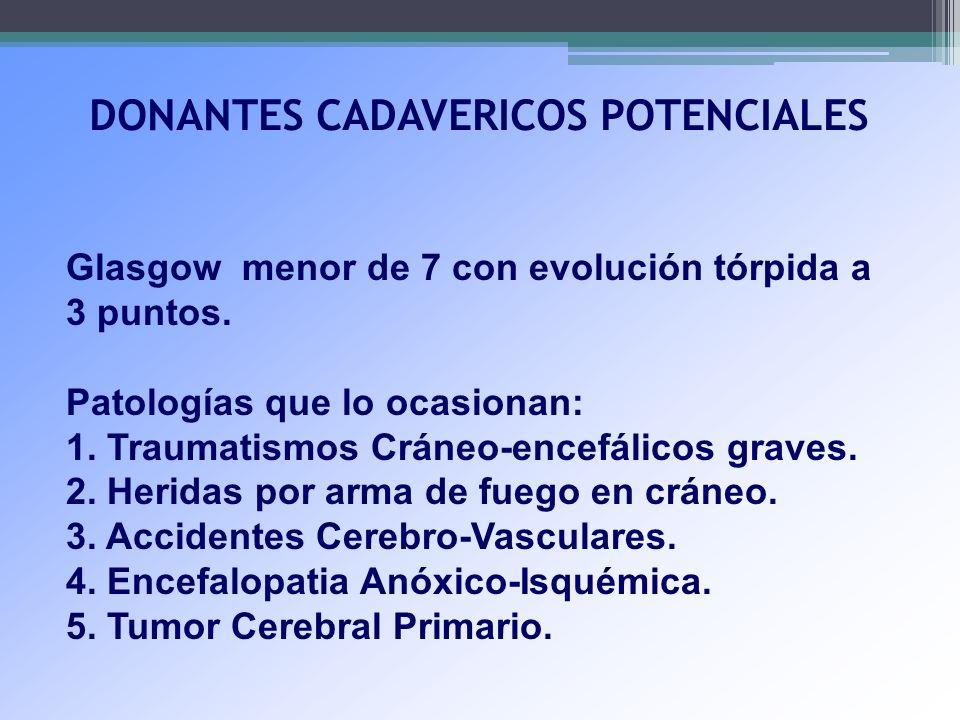 DONANTES CADAVERICOS POTENCIALES