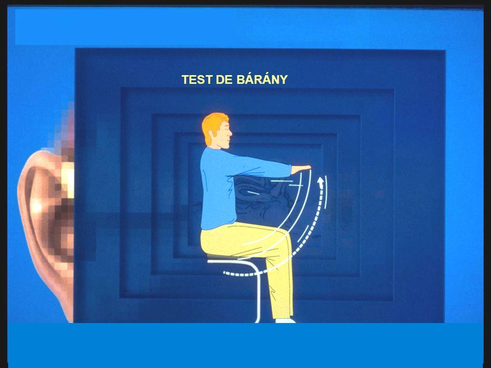 TEST DE BÁRÁNY 27