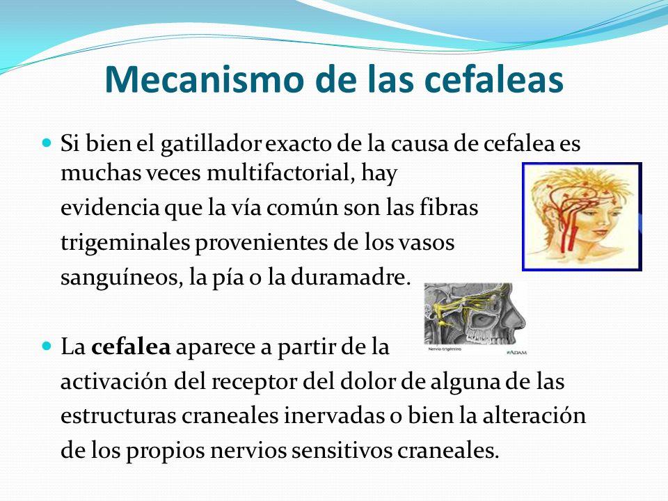 Mecanismo de las cefaleas