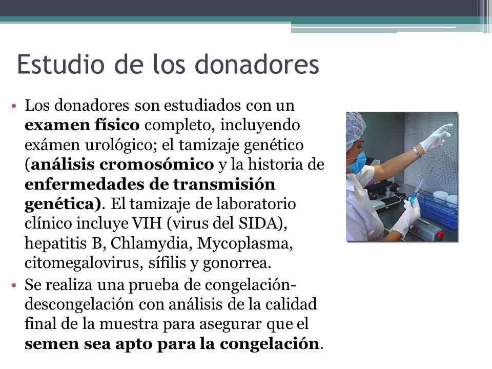 Estudio de los donadores