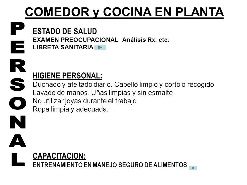 COMEDOR y COCINA EN PLANTA