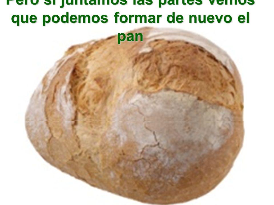 Pero si juntamos las partes vemos que podemos formar de nuevo el pan