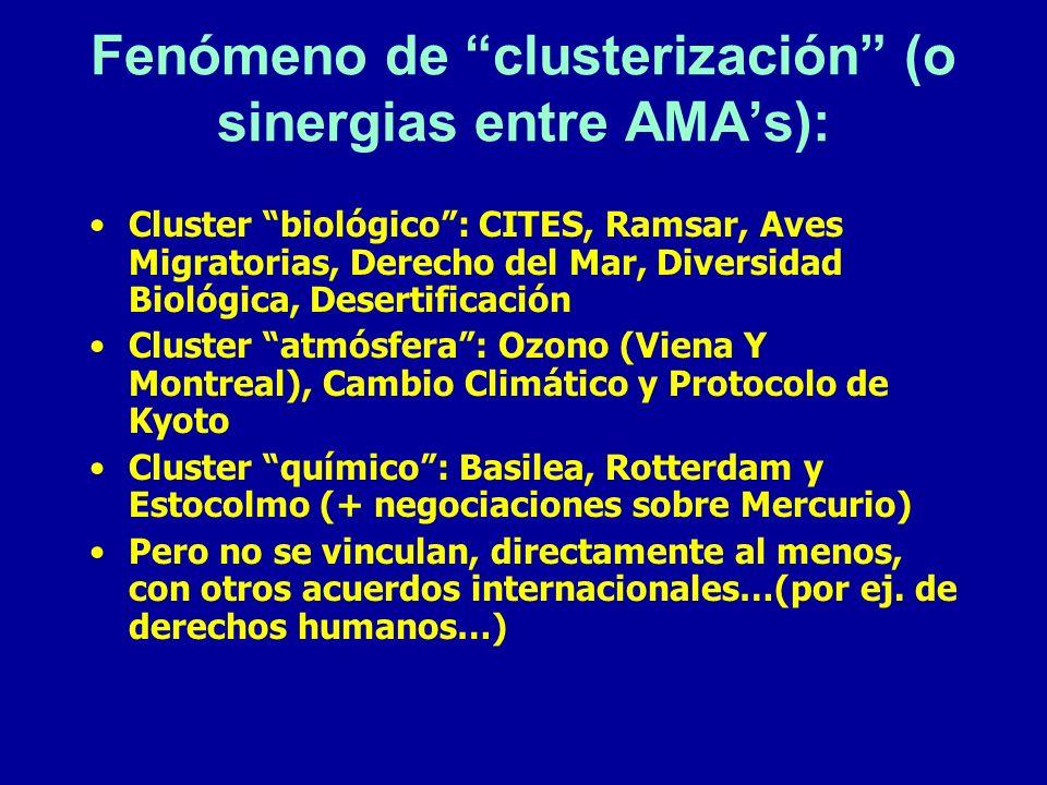 Fenómeno de clusterización (o sinergias entre AMA's):