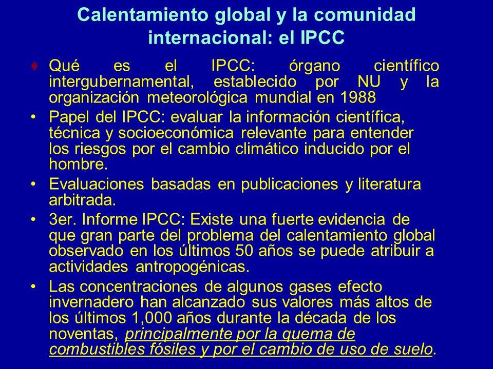 Calentamiento global y la comunidad internacional: el IPCC
