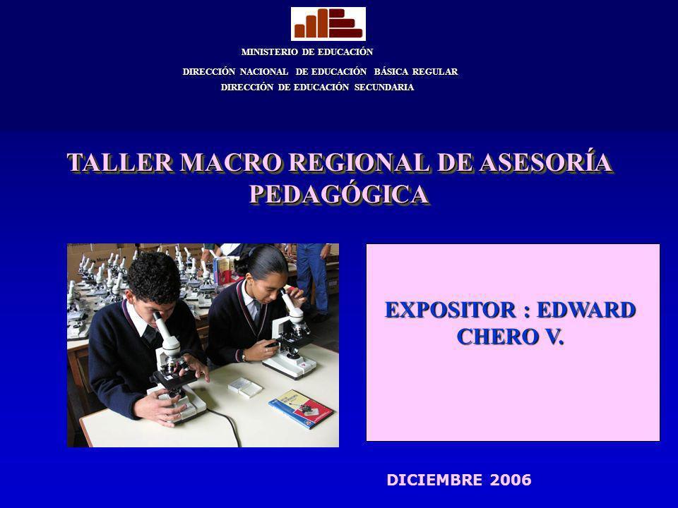 TALLER MACRO REGIONAL DE ASESORÍA PEDAGÓGICA