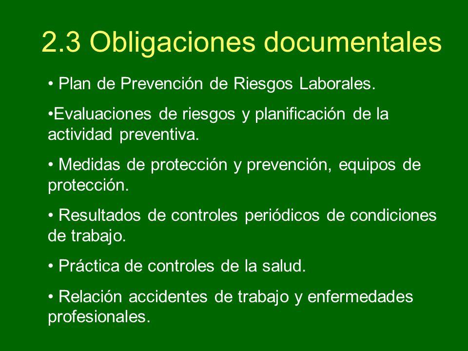 Prevenci n de riesgos laborales ppt descargar for Plan de prevencion de riesgos laborales oficina
