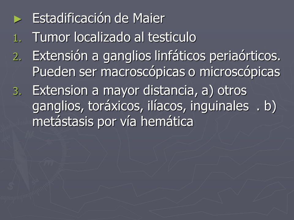 Estadificación de Maier