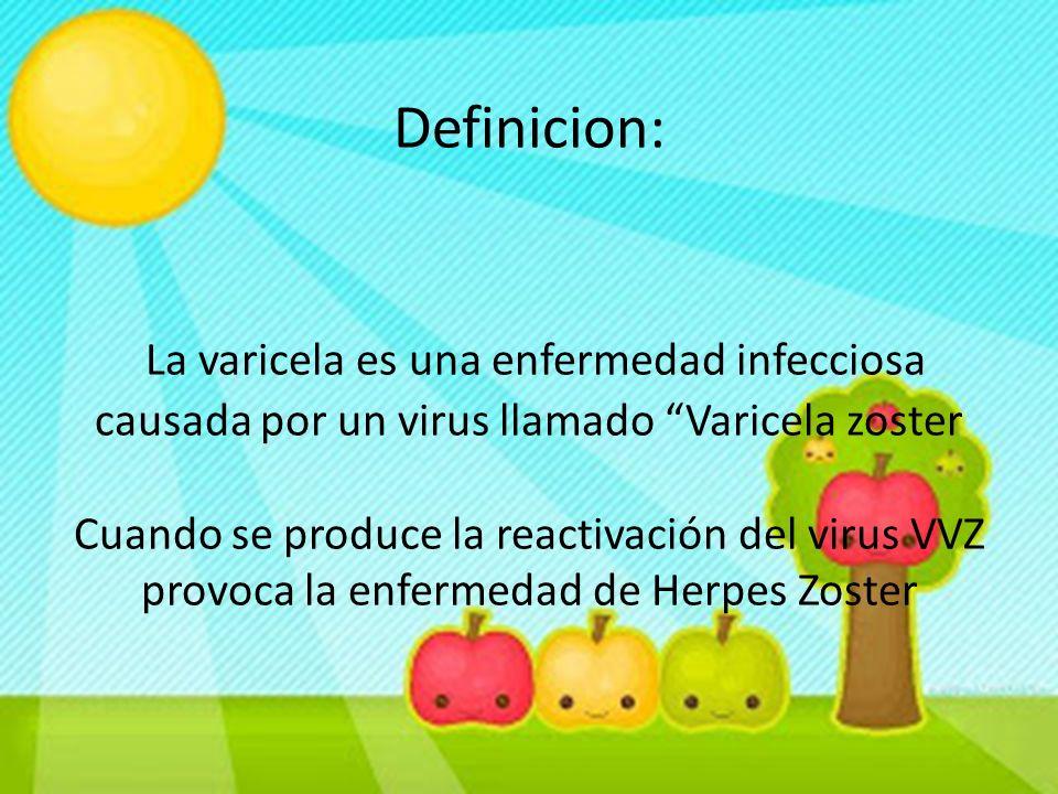 Definicion: La varicela es una enfermedad infecciosa causada por un virus llamado Varicela zoster Cuando se produce la reactivación del virus VVZ provoca la enfermedad de Herpes Zoster