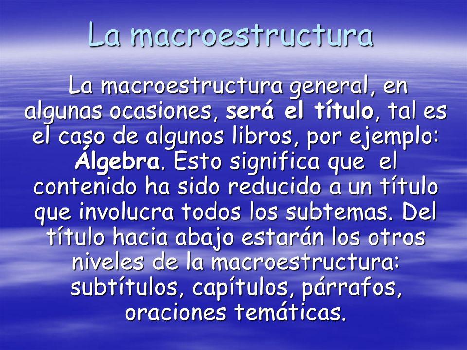 La macroestructura
