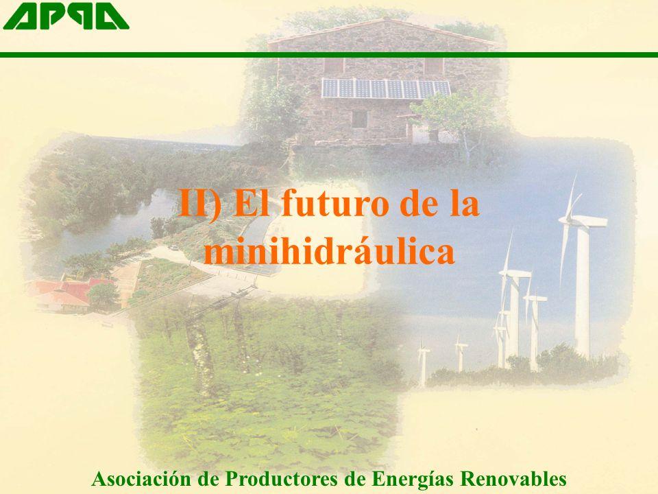 II) El futuro de la minihidráulica