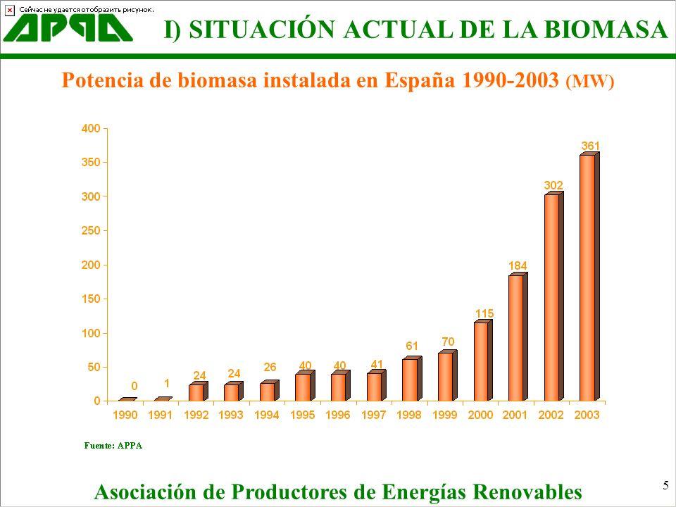 I) SITUACIÓN ACTUAL DE LA BIOMASA