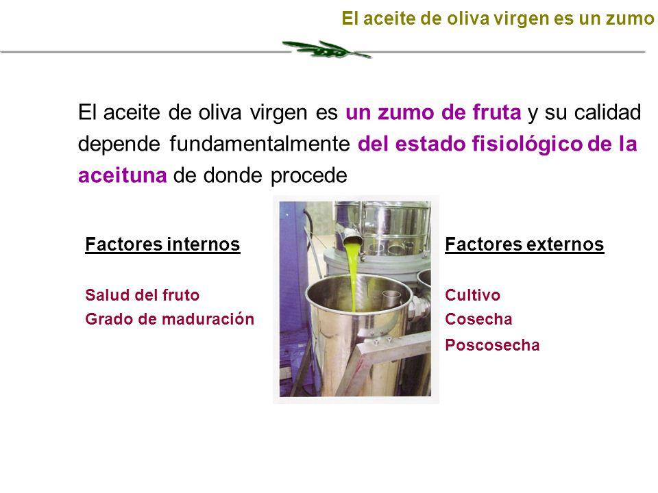 Factores internos Salud del fruto Grado de maduración