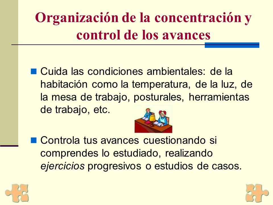 Organización de la concentración y control de los avances