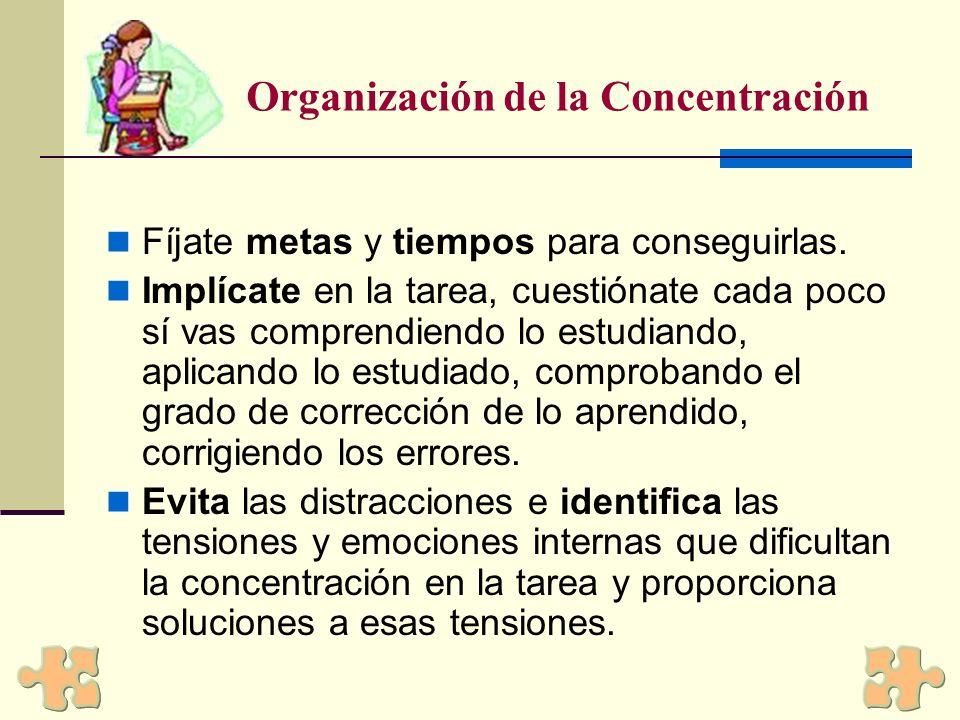 Organización de la Concentración