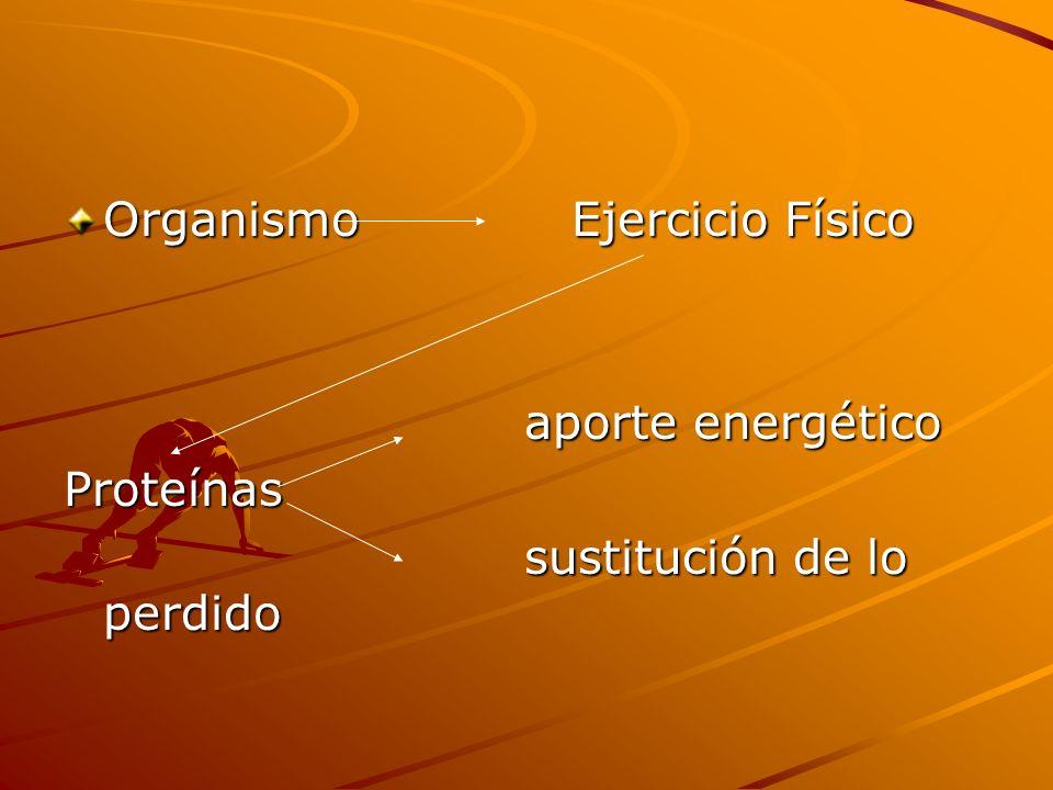 Organismo Ejercicio Físico