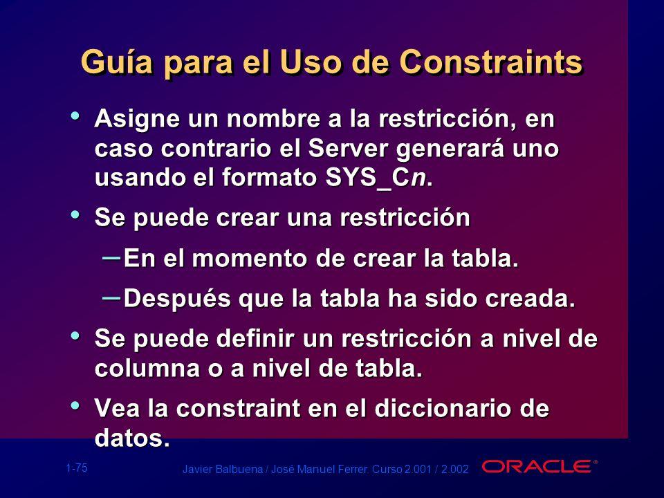 Guía para el Uso de Constraints