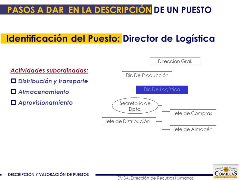 Identificación del Puesto: Director de Logística