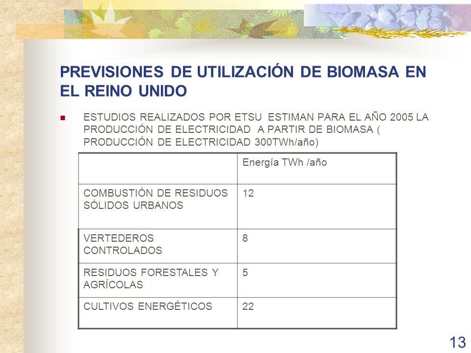 PREVISIONES DE UTILIZACIÓN DE BIOMASA EN EL REINO UNIDO