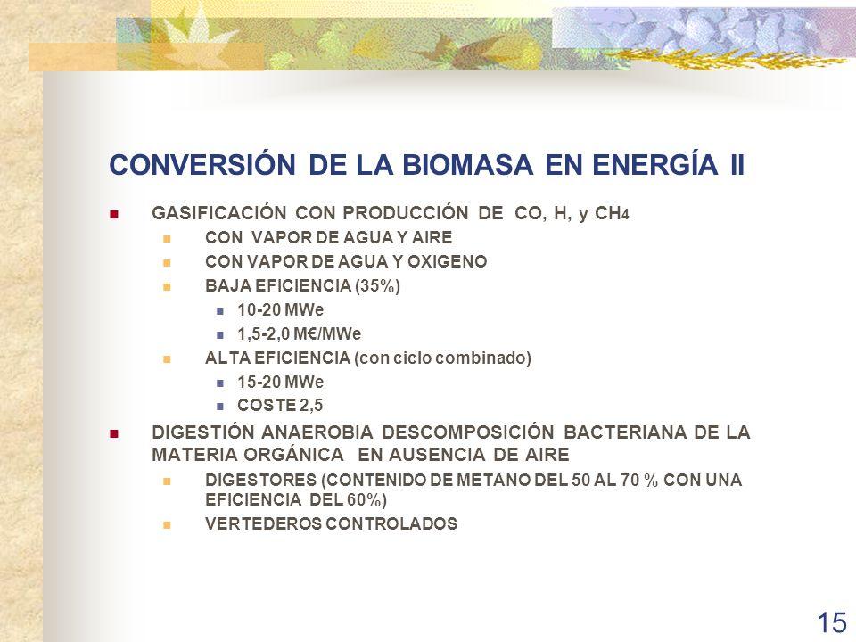 CONVERSIÓN DE LA BIOMASA EN ENERGÍA II