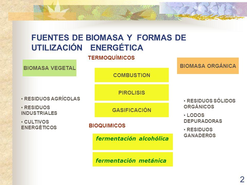 FUENTES DE BIOMASA Y FORMAS DE UTILIZACIÓN ENERGÉTICA