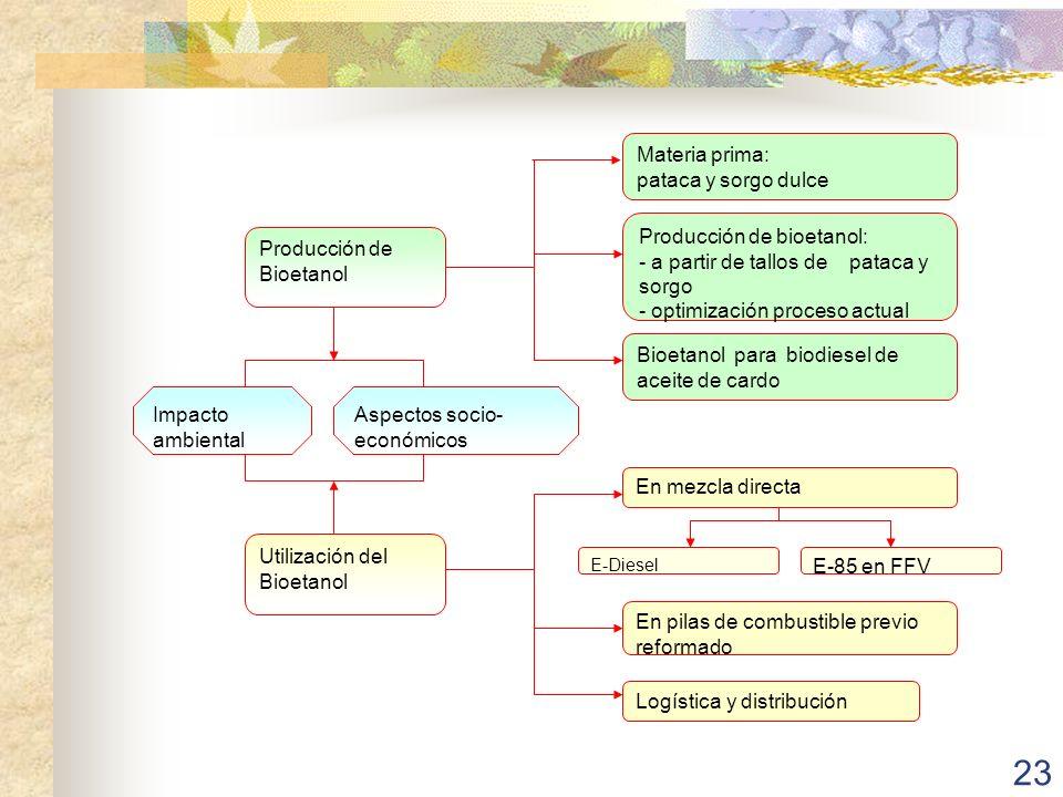 Producción de Bioetanol Materia prima: pataca y sorgo dulce