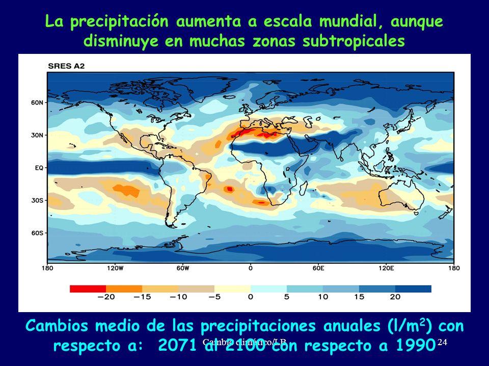 La precipitación aumenta a escala mundial, aunque disminuye en muchas zonas subtropicales