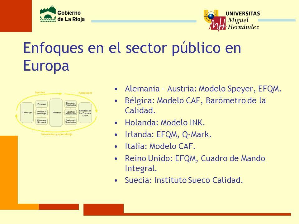 Enfoques en el sector público en Europa