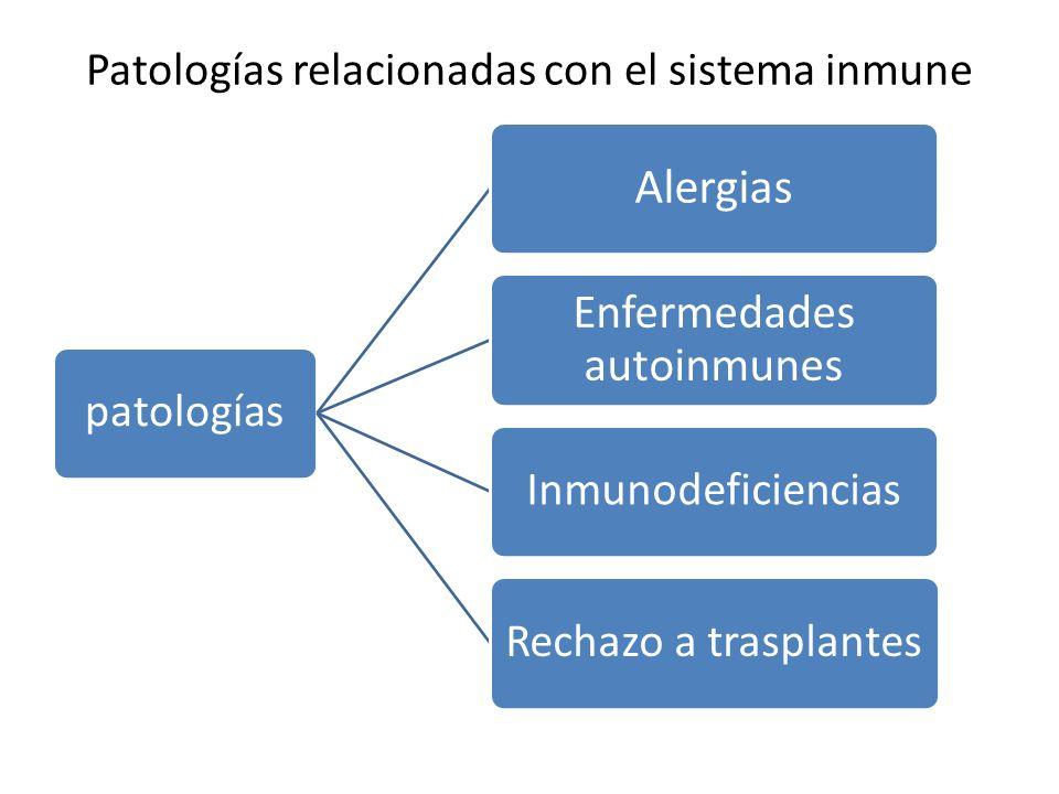 Patologías relacionadas con el sistema inmune