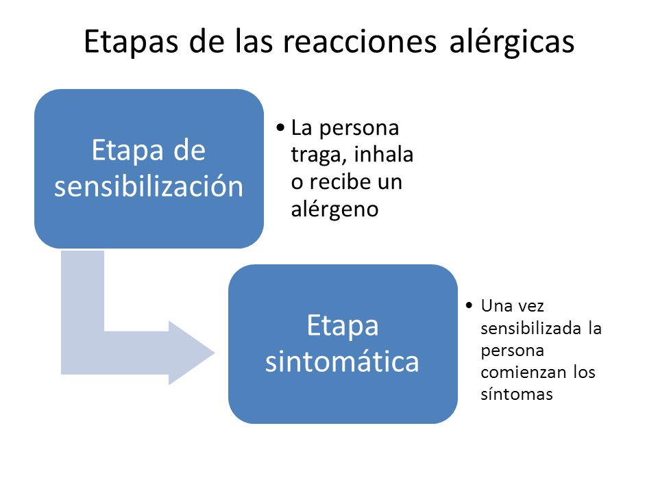 Etapas de las reacciones alérgicas