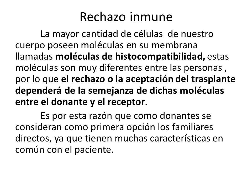 Rechazo inmune