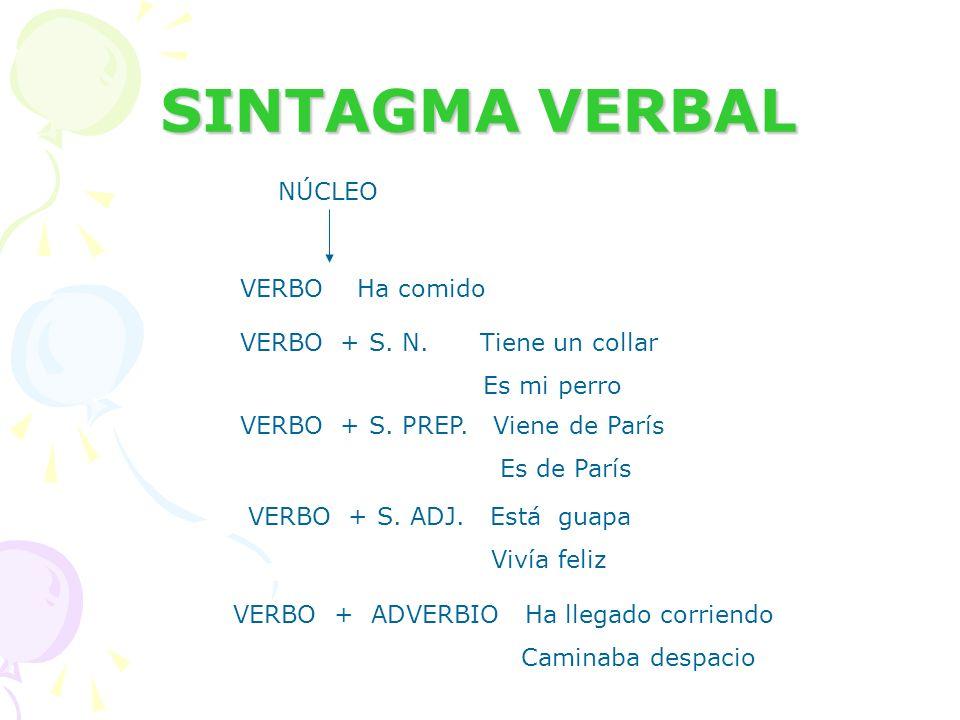 SINTAGMA VERBAL NÚCLEO VERBO Ha comido VERBO + S. N. Tiene un collar