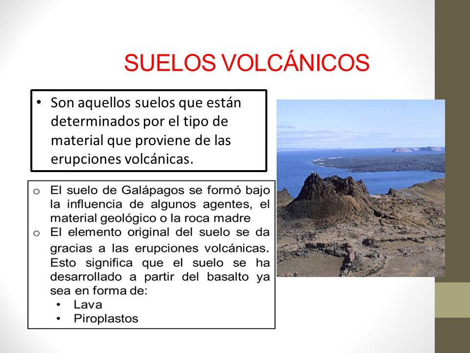 Suelos volc nicos de las islas gal pagos ppt video for Materiales que componen el suelo