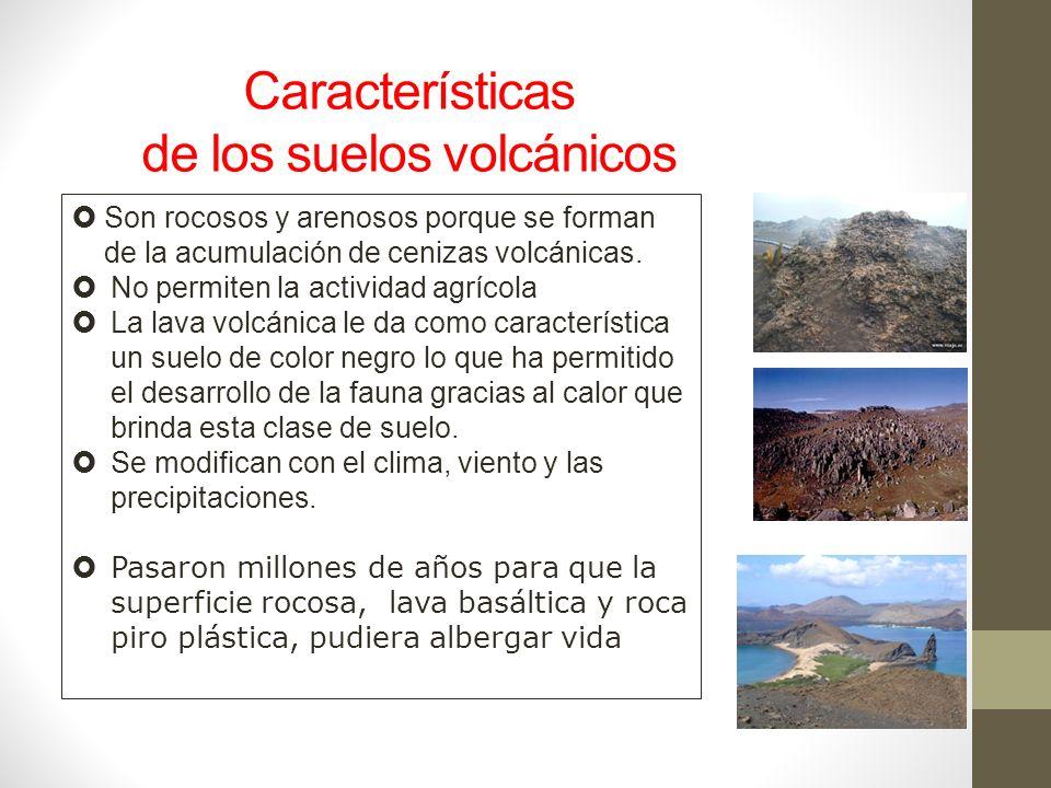 Suelos volc nicos de las islas gal pagos ppt video for Caracteristicas de los suelos