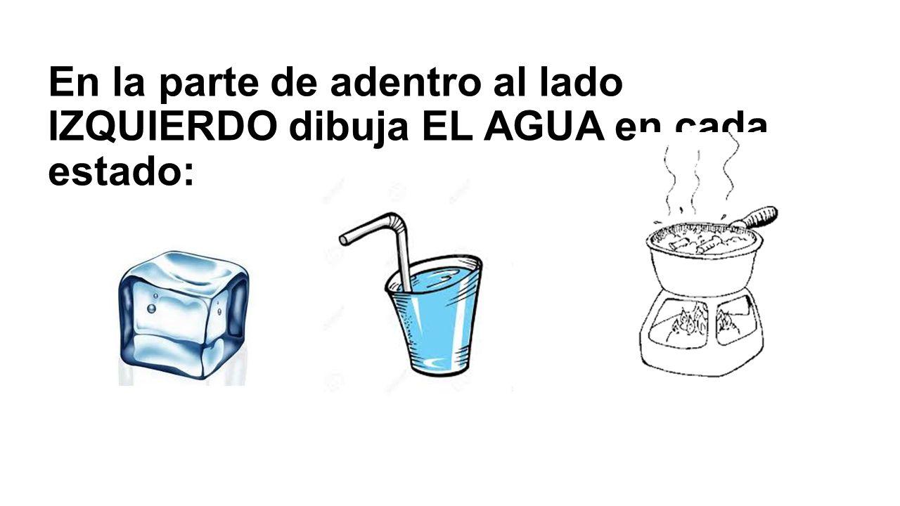 En la parte de adentro al lado IZQUIERDO dibuja EL AGUA en cada estado:
