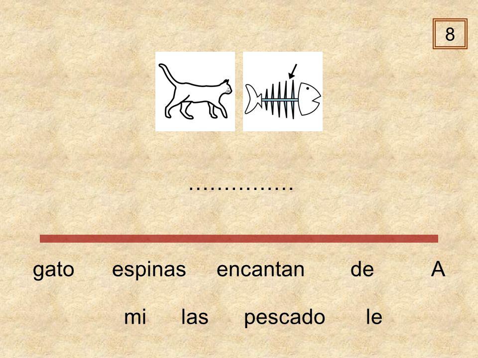 8 …………… gato espinas encantan de A mi las pescado le