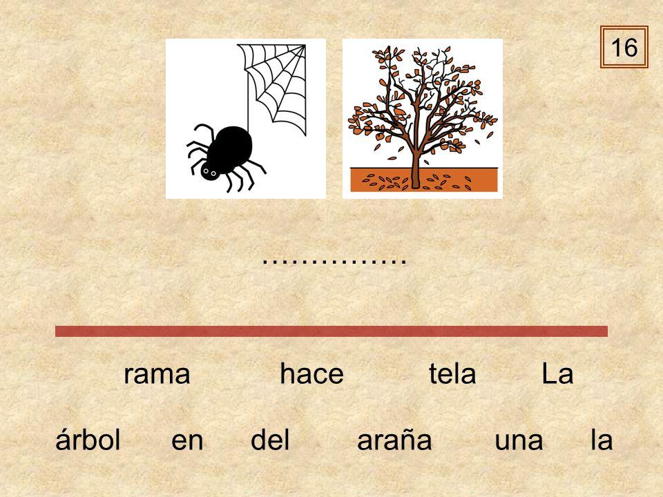 16 …………… rama hace tela La árbol en del araña una la