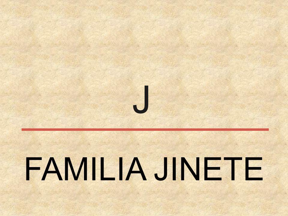 J FAMILIA JINETE
