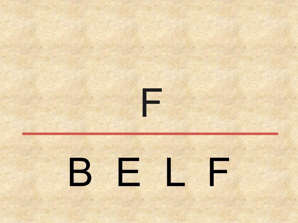 F B E L F