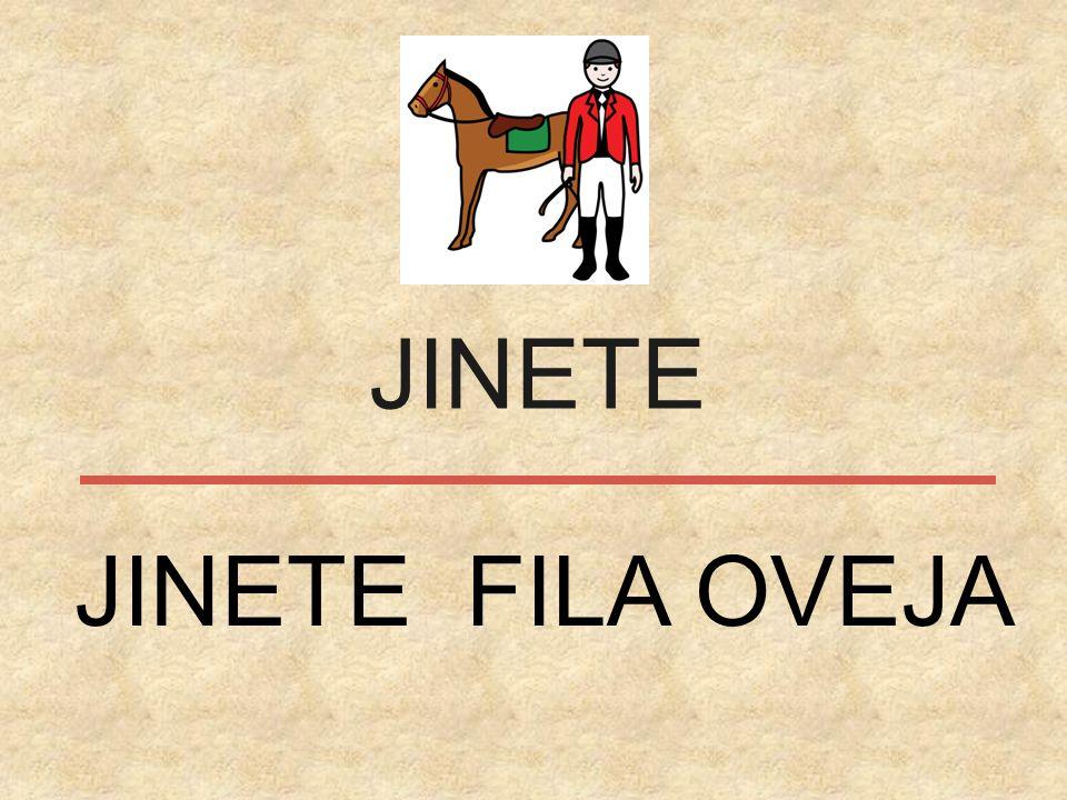 JINETE JINETE FILA OVEJA