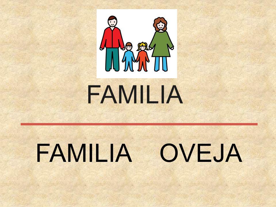 FAMILIA FAMILIA OVEJA