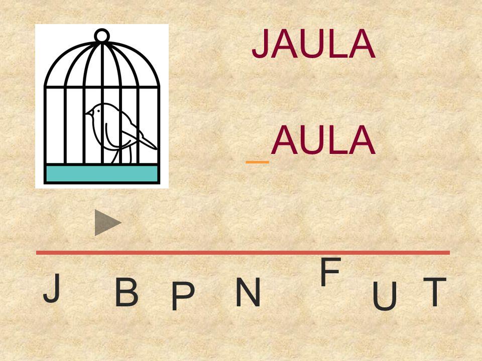 JAULA _ JAULA F J B N T P U