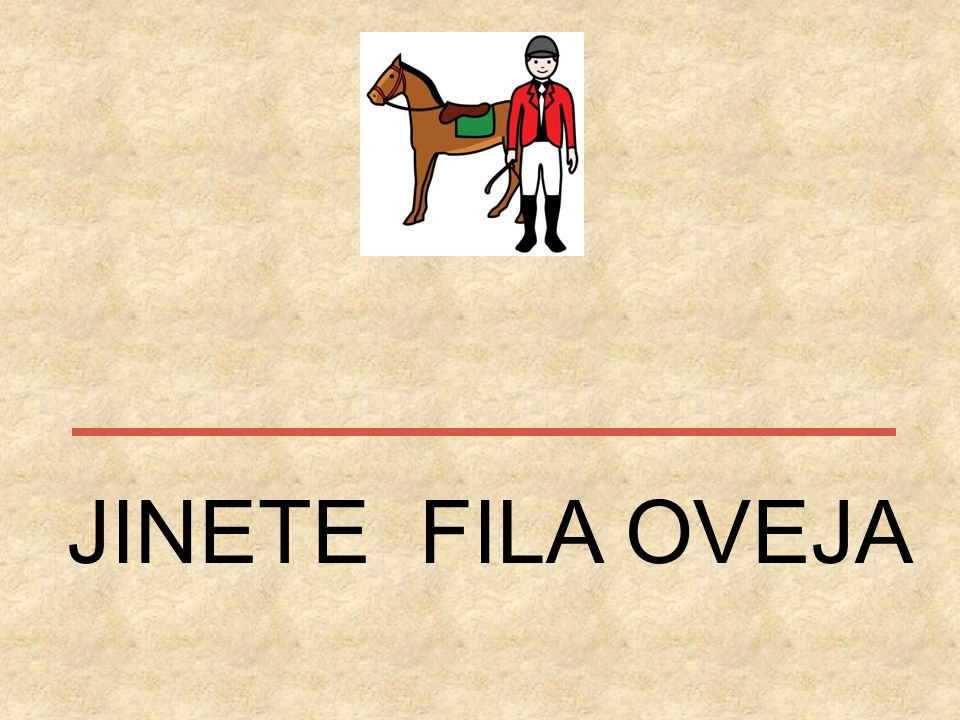 JINETE FILA OVEJA