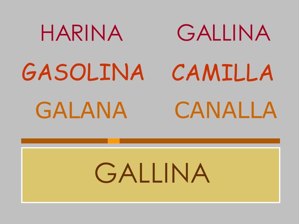 HARINA GALLINA GASOLINA CAMILLA GALANA CANALLA GALLINA
