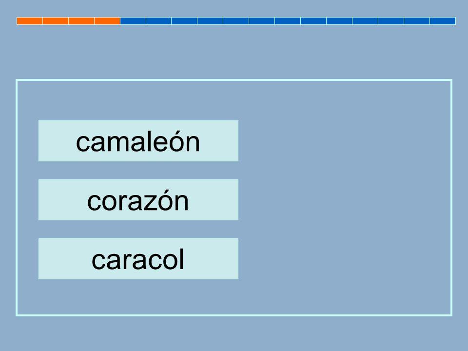 camaleón corazón caracol