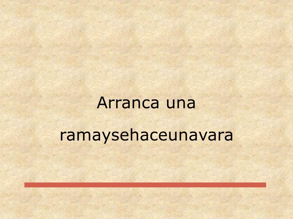 Arranca una ramaysehaceunavara
