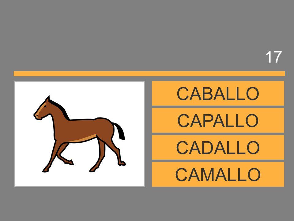 17 CABALLO CAPALLO CADALLO CAMALLO