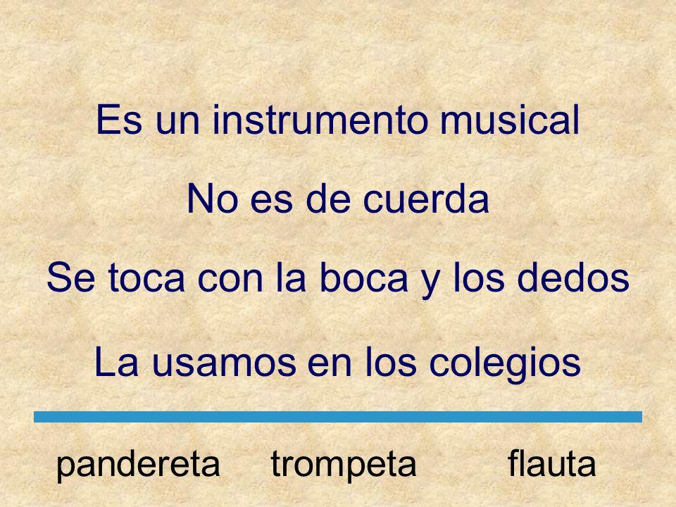 Es un instrumento musical